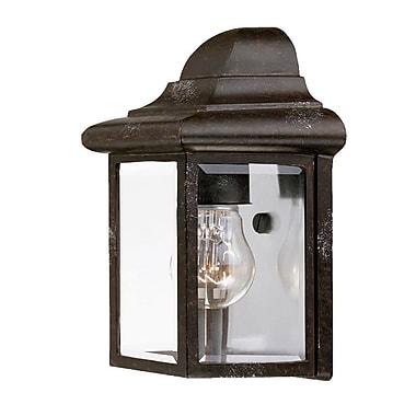Acclaim Lighting 1-Light Outdoor Flush Mount; Marbleized Mahogany