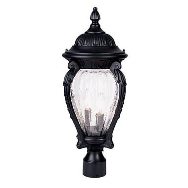 Acclaim Lighting Nottingham Outdoor 3-Light Lantern Head; Matte Black