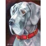 Caroline's Treasures Great Dane Natural Ears Red Collar 2-Sided Garden Flag
