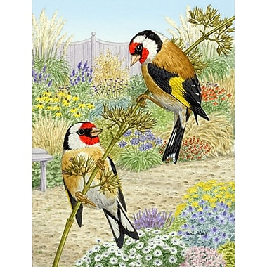 Caroline's Treasures European Goldfinches 2-Sided Garden Flag