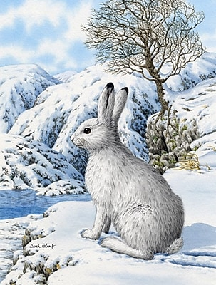 Caroline's Treasures Mountain Hare White Rabbit Vertical Flag