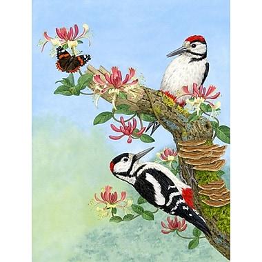 Caroline's Treasures Woodpeckers 2-Sided Garden Flag