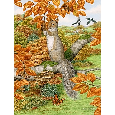 Caroline's Treasures Grey Squirrel Vertical Flag