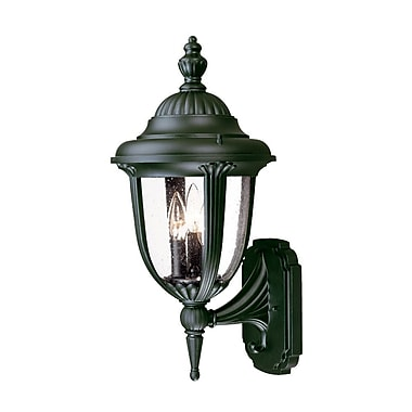 Acclaim Lighting Monterey 3-Light Outdoor Sconce; Matte Black