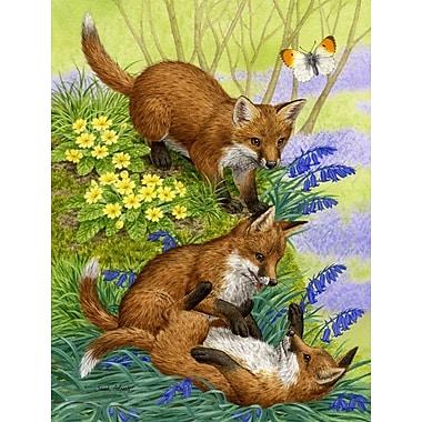 Caroline's Treasures Fox Cubs 2-Sided Garden Flag