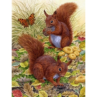 Caroline's Treasures Red Squirrels 2-Sided Garden Flag
