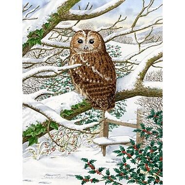 Caroline's Treasures Tawny Owl 2-Sided Garden Flag