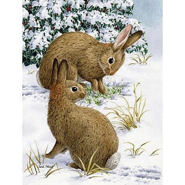Caroline's Treasures Rabbit Searching for Grass in the Snow 2-Sided Garden Flag