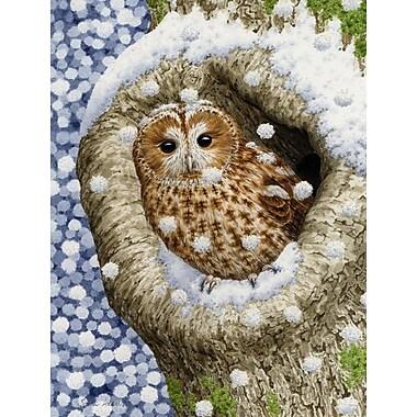 Caroline's Treasures Tawny Owl in the Tree 2-Sided Garden Flag