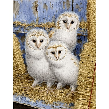 Caroline's Treasures Barn Owl Chicks 2-Sided Garden Flag
