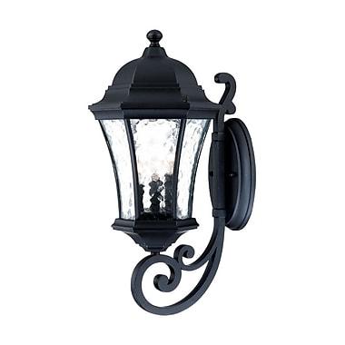 Acclaim Lighting Waverly 3-Light Outdoor Sconce; Matte Black