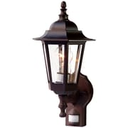 Acclaim Lighting Tidewater 1-Light Outdoor Sconce; Architectural Bronze