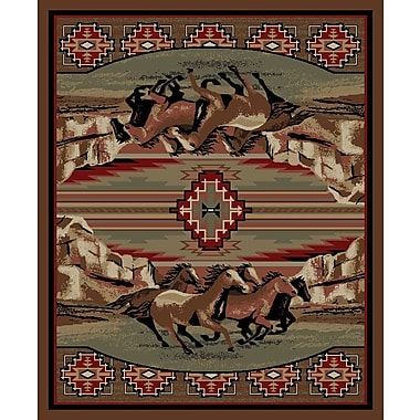 Mayberry Rug American Destinations Brown Area Rug; Rectangle 5' x 8'