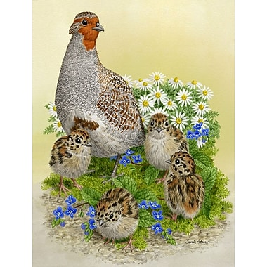 Caroline's Treasures Partridge and Chicks Vertical Flag