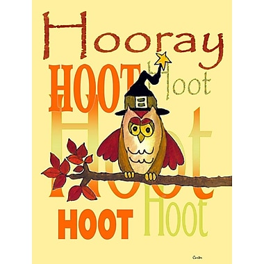 Caroline's Treasures Hooray Hoot Hoot Owl Vertical Flag
