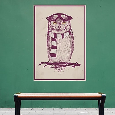 My Wonderful Walls The Aviator Owl Wall Decal; Large
