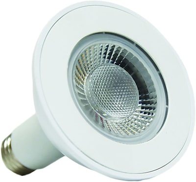 Lighting Science 13 Watt Warm White LED (FG-02429)