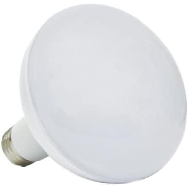 Lighting Science 20 Watt Soft White LED (FG-02486)
