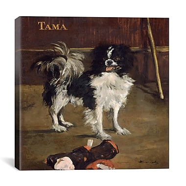 iCanvas Edouard Manet ''Tama (The Japanese Dog)'' Painting Print on Wrapped Canvas