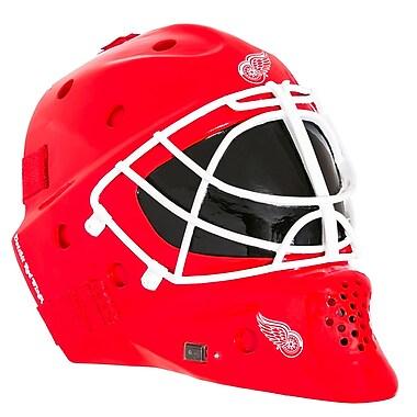 Evergreen Enterprises, Inc Landscape Melodies Detroit Red Wings Helmet