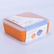 Frego Glass and Silicone Toxin free 20 Oz. Food Storage Container; Orange