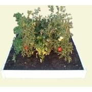 CookProducts Handy Bed Vinyl Raised Garden; 6'' H x 49'' W x 47'' D