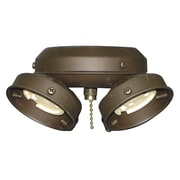 Royal Pacific 13W 4-Light Fitter