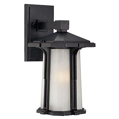 Acclaim Lighting Illuma 1-Light Outdoor Wall Lantern; Small