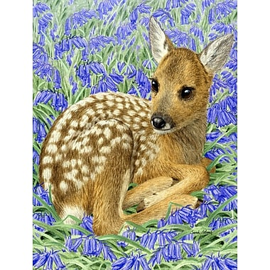 Caroline's Treasures Deer Fawn 2-Sided Garden Flag