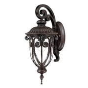 Acclaim Lighting Naples 1-Light Outdoor Wall Lantern; Marbleized Mahogany