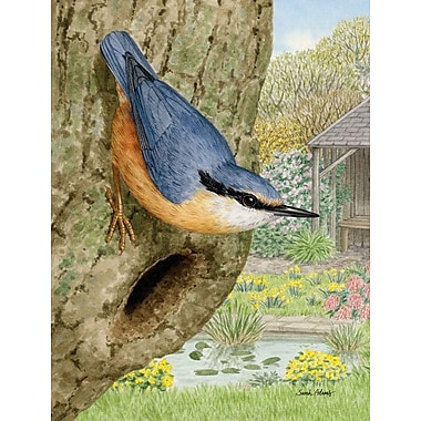 Caroline's Treasures Red-Breasted Nuthatch 2-Sided Garden Flag