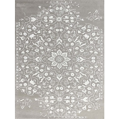 AMER Rugs Artist Hand-Tufted Silver/White Area Rug; Rectangle 7'6'' x 9'6''