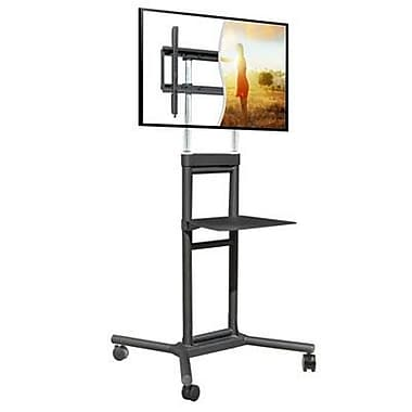DoubleSight DISPLAYS Mobile TV Display Stand for 32