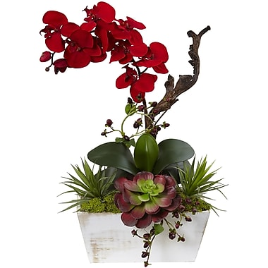 Nearly Natural Seasonal Orchid and Succulent Garden Wash Planter