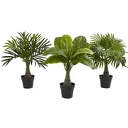 Nearly Natural 3 Piece Areca, Fountain and Banana Palm Desktop Plant Set in Pot (Set of 3)