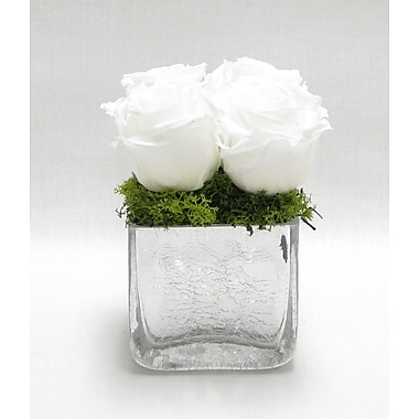 Bougainvillea Reindeer Moss and Rose Cracked Cube; White