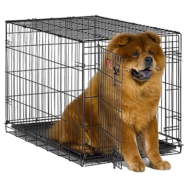 Midwest Homes For Pets iCrate Single Door Pet Crate; Intermediate (25'' H x 23'' W x 36 L)