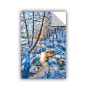 ArtWall Frozen Winter Creek by Julie Mann Sperry Wall Mural; 18'' H x 12'' W x 0.1'' D