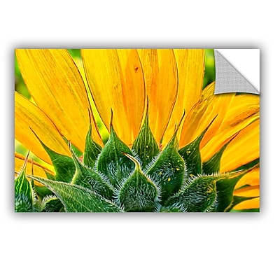 ArtWall Sunflower Fan by Julie Mann Sperry Wall Mural; 24'' H x 36'' W x 0.1'' D