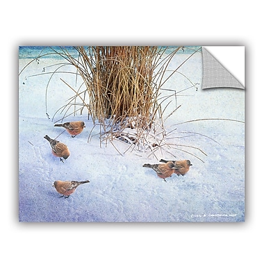 ArtWall Rosy Finches by Chris Vest Wall Mural; 36'' H x 48'' W x 0.1'' D