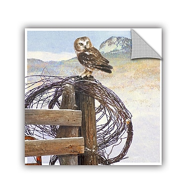 ArtWall Owl on Rusty Fence by Chris Vest Wall Mural; 36'' H x 36'' W x 0.1'' D