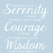 SweetumsWallDecals Serenity Prayer Wall Decal; White