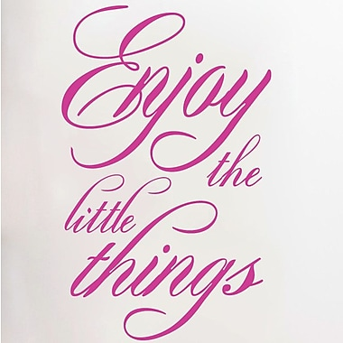 SweetumsWallDecals Enjoy The Little Things Wall Decal; Hot Pink