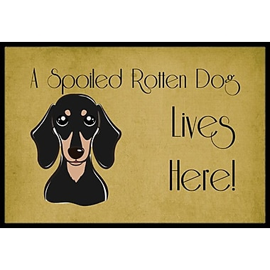 Caroline's Treasures Smooth Black and Tan Dachshund Spoiled Dog Lives Here Doormat; 1'6'' x 2'3''