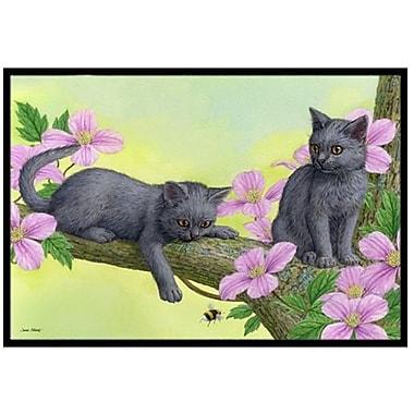 Caroline's Treasures Chartruex Kittens Doormat; 2' x 3'