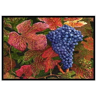 Caroline's Treasures Grapes Of Joy Doormat; 2' x 3'