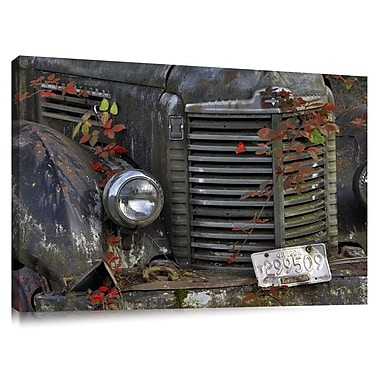Colossal Images 'Old Truck w/ Blackberry Vines' by Dennis Frate Photographic Print on Canvas