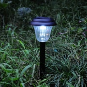 CAP Lighting Mini Solar 1-Light Pathway Light (Set of 10)