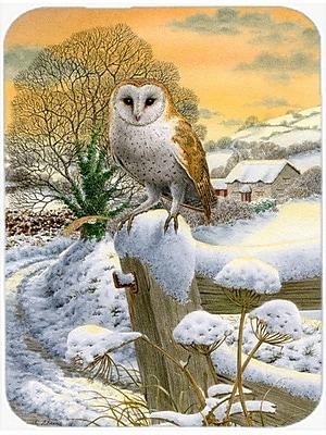 Caroline's Treasures Sunset Barn Owl Glass Cutting Board
