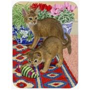 Caroline's Treasures Abyssinian Kitten Glass Cutting Board